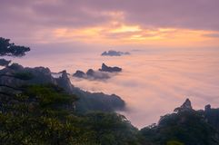 Sea of clouds in sunset Stock Images