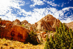 Grand Wash trail, Capital Reef National Park, Utah, USA. Grand Wash is a famous gorge that cuts its way through the upper portion of the Waterpocket Fold in Royalty Free Stock Photos