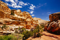 Grand Wash trail, Capital Reef National Park, Utah, USA Royalty Free Stock Photos