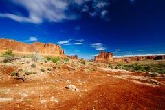 Grand Wash trail, Capital Reef National Park, Utah, USA Royalty Free Stock Photo