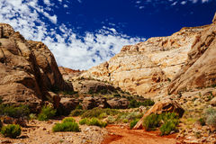 Grand Wash trail, Capital Reef National Park, Utah, USA. Grand Wash is a famous gorge that cuts its way through the upper portion of the Waterpocket Fold in Stock Image