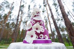 Grand wedding cake with flowers Stock Photography