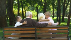 Grandchildren running to grandparents and hugging them, resting on bench in park. Stock footage stock video footage