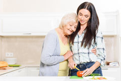 Granddaughter cutting vegetables Royalty Free Stock Image