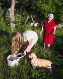 Granddaughter and grandchild harvesting cherry Stock Photography