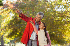 Granddaughter with grandmother pointing while standing at park Stock Photography