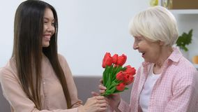 Granddaughter presenting grandmother bunch of tulips, holiday celebration. Stock footage stock footage