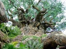 A grande árvore fotografia de stock