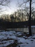 Grande árvore por uma lagoa pequena no por do sol Foto de Stock