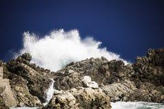 Grande éclaboussure se brisante orageuse dramatique de vagues Kleinmond, le Cap-Occidental, Afrique du Sud photo libre de droits