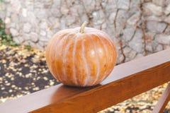 A grande abóbora alaranjada encontra-se em trilhos de madeira da varanda Imagens de Stock Royalty Free