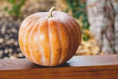 A grande abóbora alaranjada encontra-se em trilhos de madeira da varanda Fotos de Stock Royalty Free