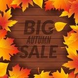 Grande affiche de calibre de conception de vente d'automne Insecte promotionnel de chute Les offres d'Autumn Discounts conçoivent illustration libre de droits