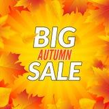 Grande affiche de calibre de conception de vente d'automne Insecte promotionnel de chute Conception d'offres d'Autumn Discounts a illustration libre de droits