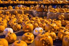 Grande agrupamento de abóboras cinzeladas de Dia das Bruxas Imagens de Stock Royalty Free