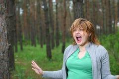 Grande alarme dans les bois Image libre de droits
