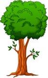 Grande albero del fumetto