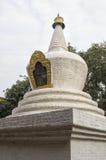 Grande albero imbiancato di bodhi e di stupa nel primo cortile di Punakha Dzong, Bhutan Fotografia Stock