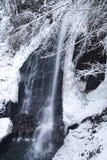 Grande alta cascata nella foresta di inverno della montagna con gli alberi e le precipitazioni nevose innevati Immagini Stock