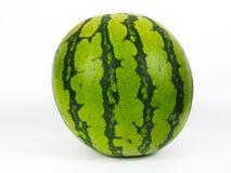 Grande anguria senza semi succosa separata fotografia stock