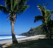 Grande Anse beach, Reunion island Stock Photo