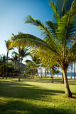 Grande Anse beach, Reunion Island Royalty Free Stock Photography