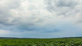 Grande approche noire de nuages de tempête banque de vidéos