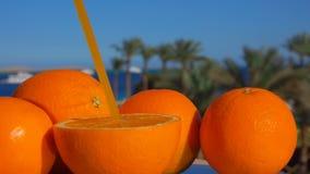 Grande arancia succosa matura con una paglia stock footage