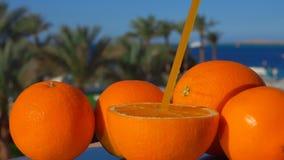 Grande arancia succosa matura con una paglia archivi video