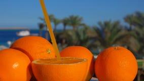 Grande arancia succosa matura con una paglia video d archivio