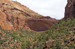 Grande arco, Zion National Park Fotografia Stock