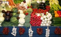 Grande assortimento dei frutti organici freschi Composizione della pagina del FRU Fotografia Stock Libera da Diritti