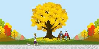 Grande Autumn Tree nel parco Immagine Stock Libera da Diritti