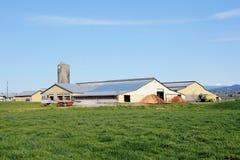 Grande azienda agricola canadese Fotografie Stock