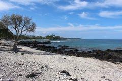 Grande baia della spiaggia dell'Hawai dell'isola Fotografia Stock Libera da Diritti