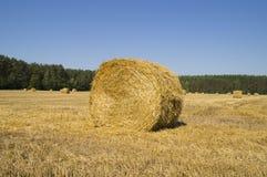 Grande balla di paglia sul campo una forma rotonda Fotografie Stock Libere da Diritti
