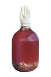 Grande banco de vidro com um vinho caseiro Fotos de Stock