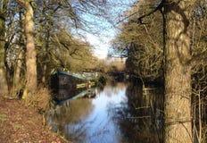 Grande barca nascosta sotto gli alberi Immagini Stock