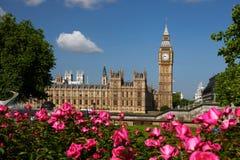Grande Ben con le rose, Londra, Regno Unito Fotografia Stock Libera da Diritti
