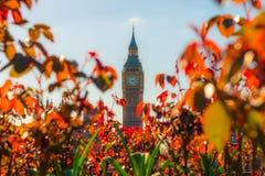Grande Ben Londra Regno Unito Fotografia Stock Libera da Diritti