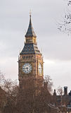 Grande Ben, Westminster, Londra, in sera in anticipo fotografia stock libera da diritti