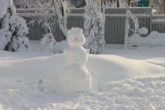 Grande boneco de neve com um nariz da cenoura de Imagens de Stock Royalty Free