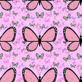 Grande borboleta cor-de-rosa cercada por borboletas coloridos pequenas ilustração royalty free