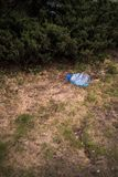 Grande bouteille en plastique bleue se trouvant au sol dans l'arbre dans une for?t de parc - jet?e pas a r?utilis? - d?chets et p image stock