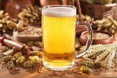 Grande brocca della birra Fotografie Stock
