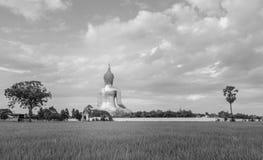Grande Buddha della Tailandia Fotografia Stock