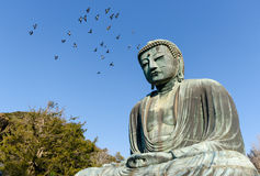 Grande Buddha, Kamakura, Giappone Fotografie Stock Libere da Diritti