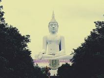 Grande Buddha in Khon Kaen Immagini Stock