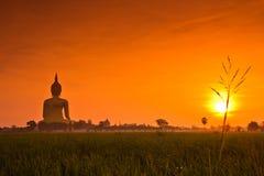 Grande Buddha a Wat Muang nel tramonto, Tailandia Fotografie Stock Libere da Diritti