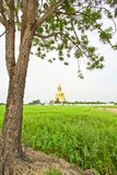 Grande Buddha a Wat Mung, Tailandia Immagine Stock